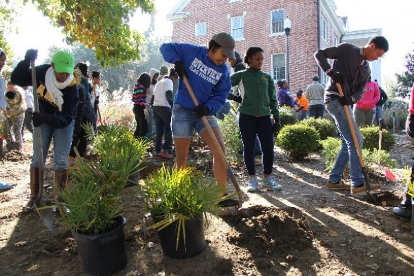 Students, staff, and faculty all got involved in replanting GreenCo Park.